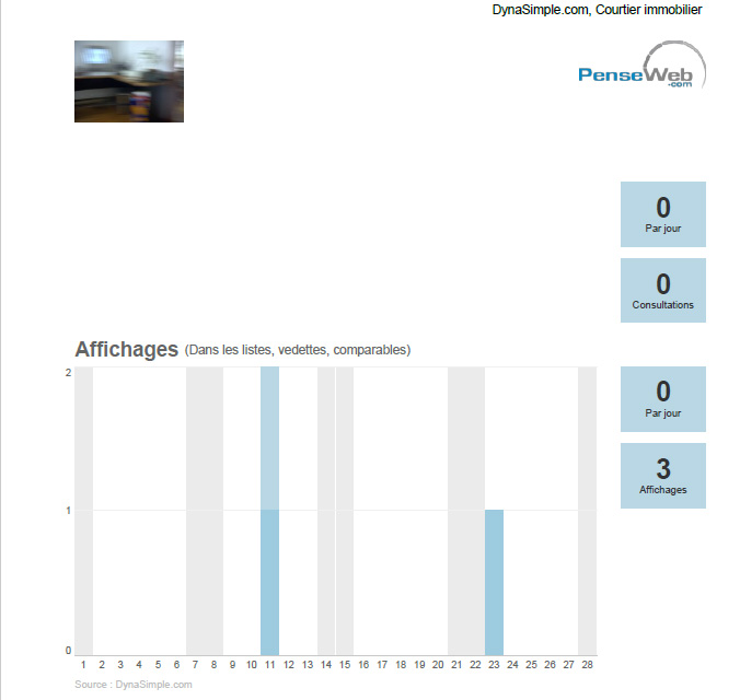 3 - Un nouvel onglet de votre navigateur contenant le rapport devrait s'ouvrir